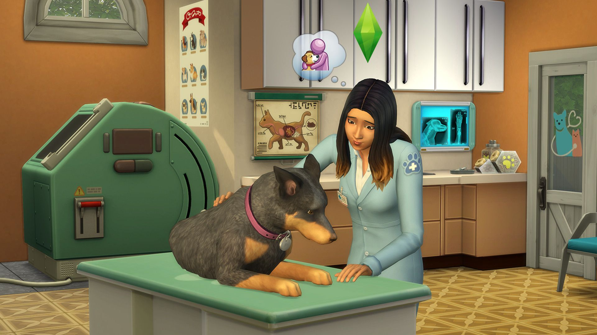 "The Simsâ""¢ 4 My First Pet Stuff"