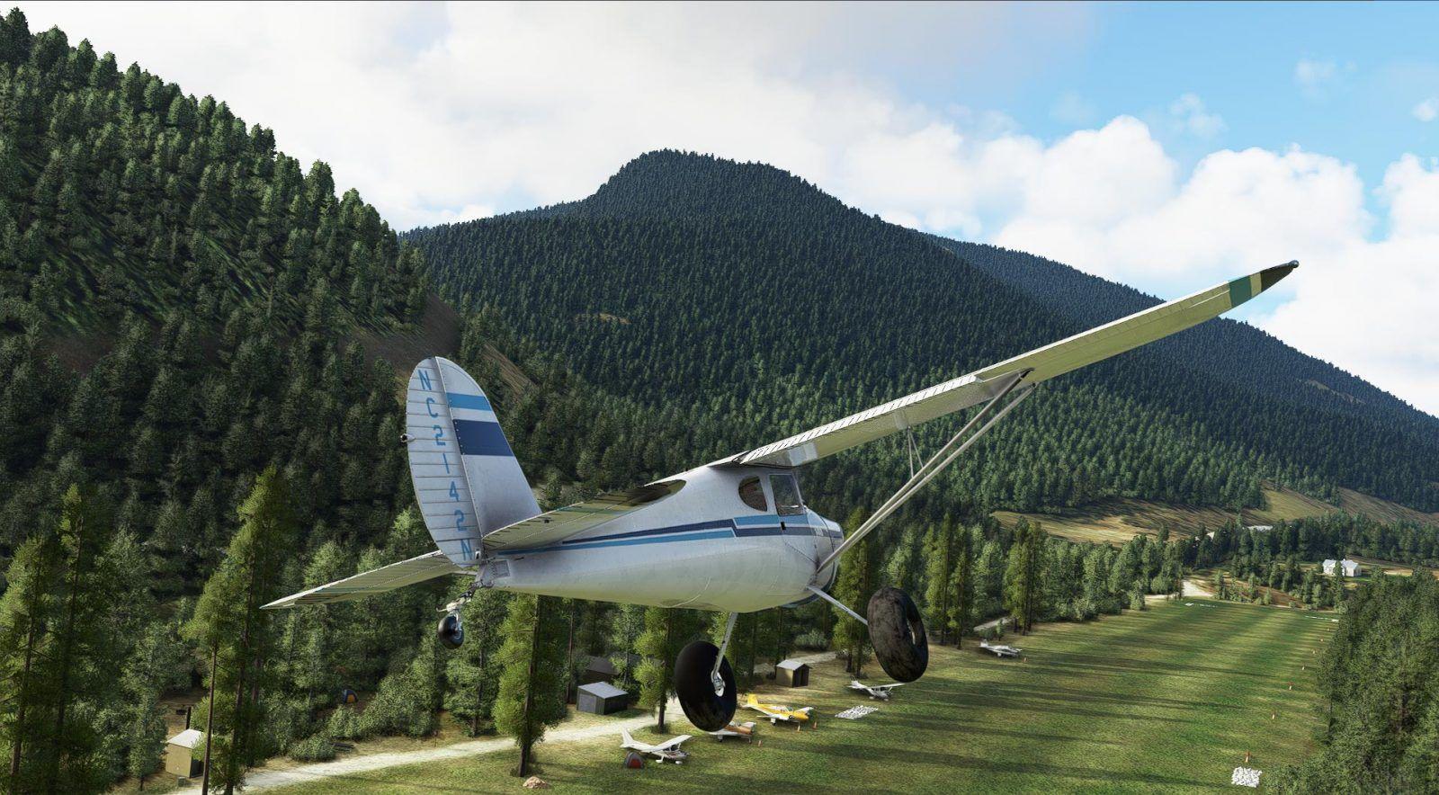 MSFS Cessna 140