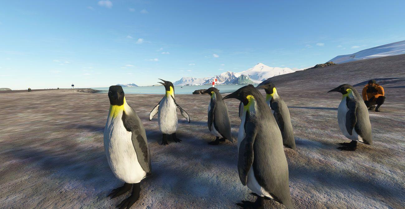 MSFS Antarctica Vol. 1 British Rothera and Beyond