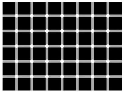 opticsl illusion 6