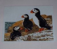 Atlantic Puffins on a Cliff ~ Cross Stitch Chart