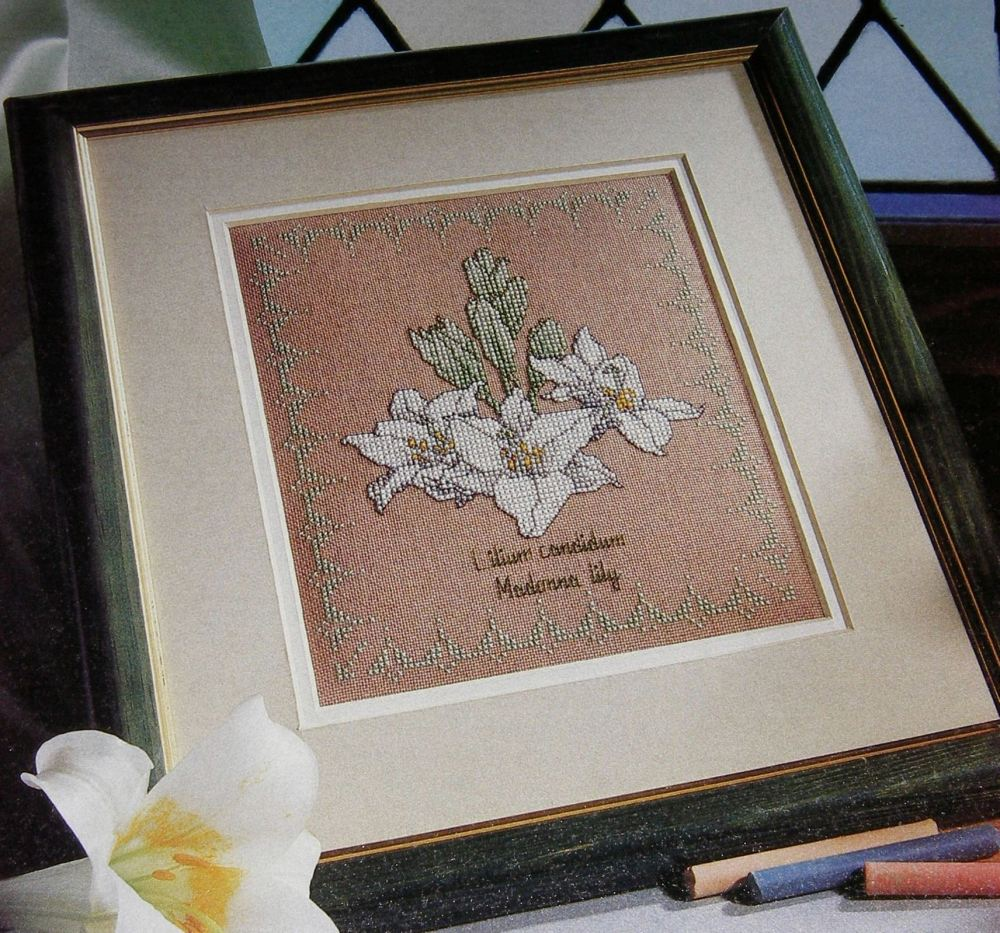 Botanical Study: Madonna Lily ~ Cross Stitch Chart