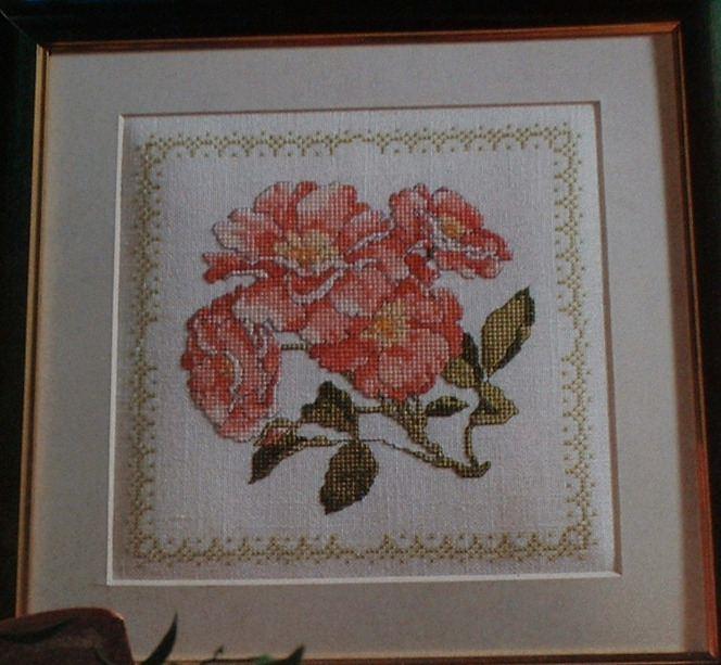 First Rose of Summer ~ Cross Stitch Chart