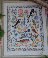 Summer Birds & Wildflowers Sampler ~ Cross Stitch Chart