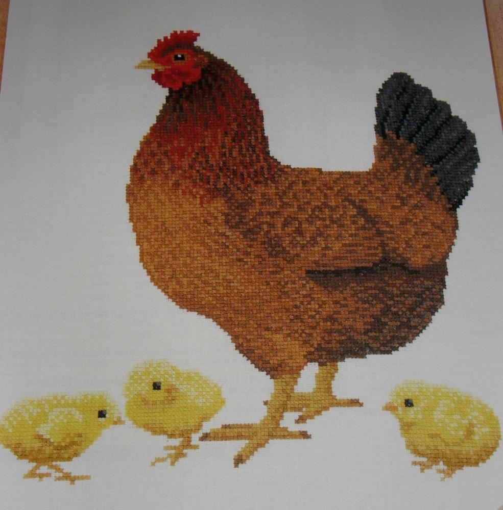 Welsummer Hen & Chicks ~ Cross Stitch Chart