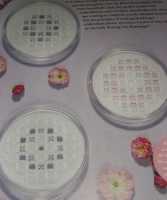 Hardanger Coasters/Cards ~ Three Hardanger Embroidery Patterns