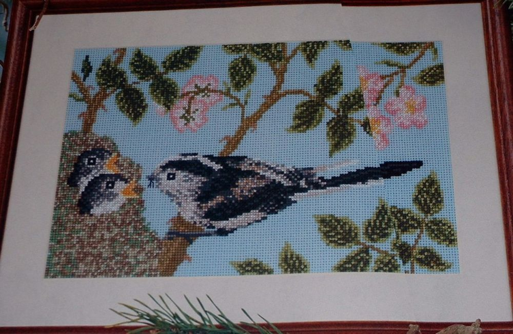 Long Tailed Tit Family in a Rosebush ~ Cross Stitch Chart
