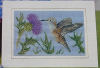 American Hummingbird ~ Cross Stitch Chart