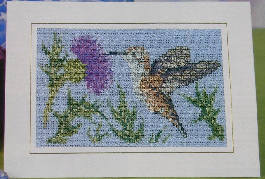 American Hummingbird ~ Cross Stitch Chart