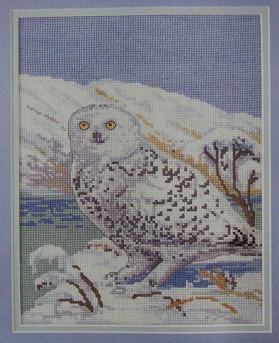 Snowy Owl ~ Cross Stitch Chart