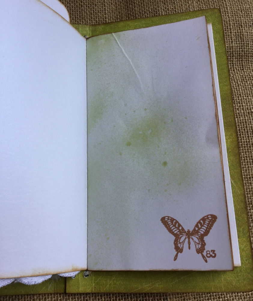 Beauty TN 13 green notebook butterfly