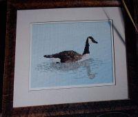 Canada Goose ~ Cross Stitch Chart