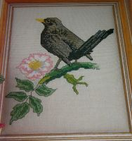 British Bird: The Blackbird ~ Cross Stitch Chart