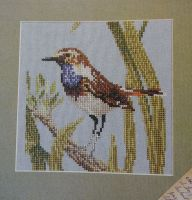 The Bluethroat Bird ~ Cross Stitch Chart