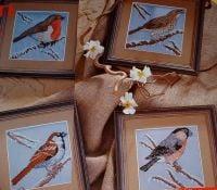 Four British Garden Birds ~ Cross Stitch Charts