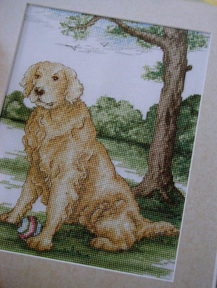 Golden Labrador Retriever ~ Cross Stitch Chart