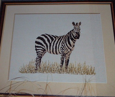 Zebra On Safari ~ Cross Stitch Chart