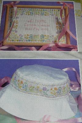 Floral Baby Girl Birth Sampler & Bandings ~ Cross Stitch Charts