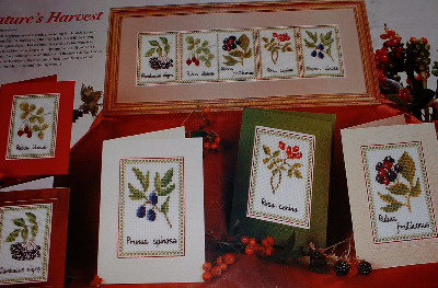 Hedgerow Fruits ~ Five Cross Stitch Charts