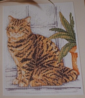 Tabby Cat in Window ~ Cross Stitch Chart