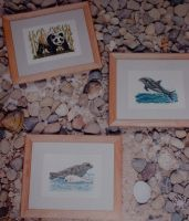 Panda, Seal & Dolphin ~ Three Cross Stitch Charts