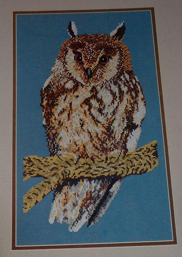 Long-Eared Owl ~ Cross Stitch Chart