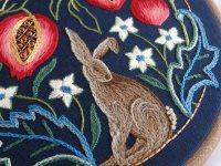 lsm detail 1 hare