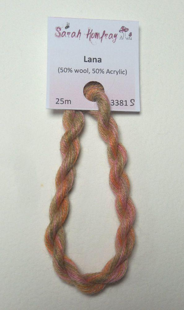 3381s Rose garden Lana thread (variegated)