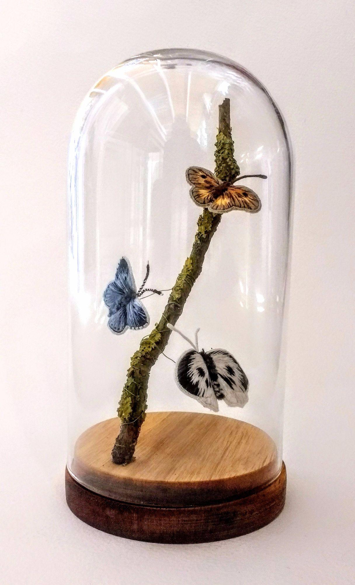 Bell jar butterflies