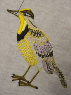 Western meadow lark in progress 2
