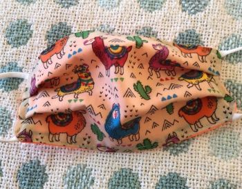 Kid's Handcrafted Reusable Washable Fabric Face Mask Covering Raising Money For Mind Cactus Llama & Orange