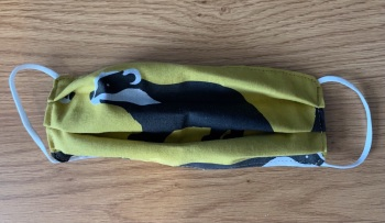 Adult's and Kid's Handcrafted Reusable Washable Fabric Face Mask Covering Raising Money For Mind Wild Badger