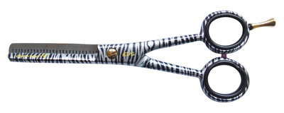 EVS Zebra 5.5