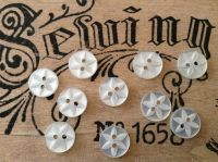 White Star Buttons, Set of 10 x 14mm