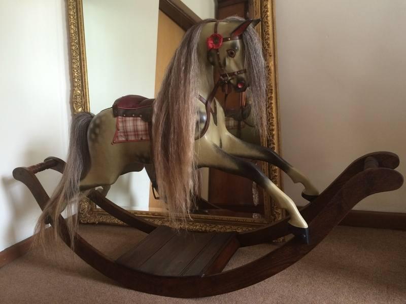 Poppy in front of mirror