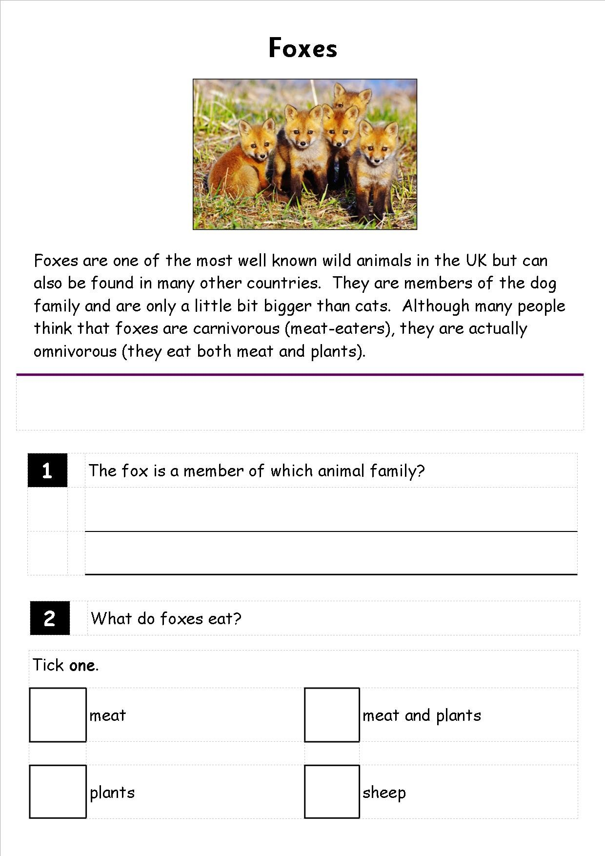 ks1  ks2  literacy  sats reading  comprehension  fiction