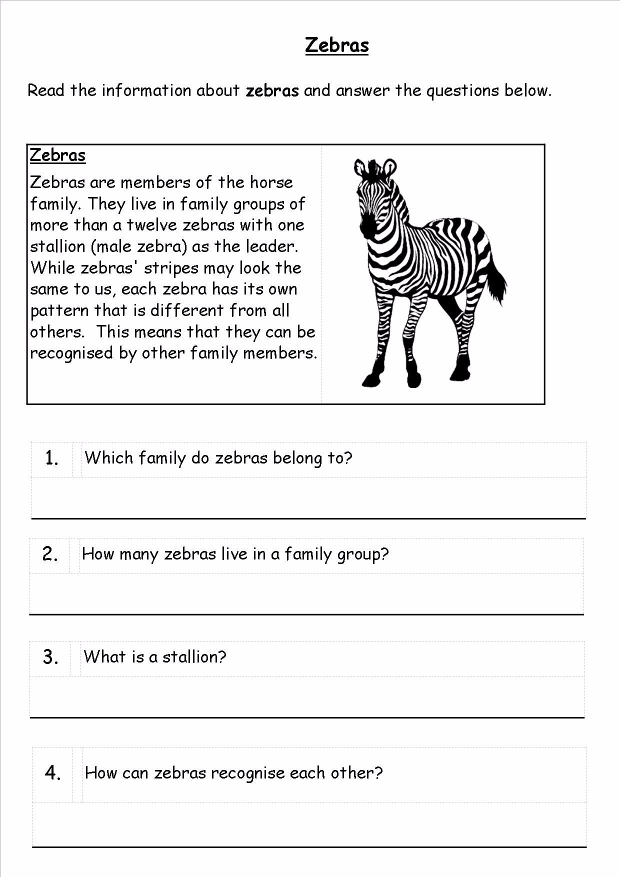 ks1 reading skills  spag  spelling  punctuation  writing