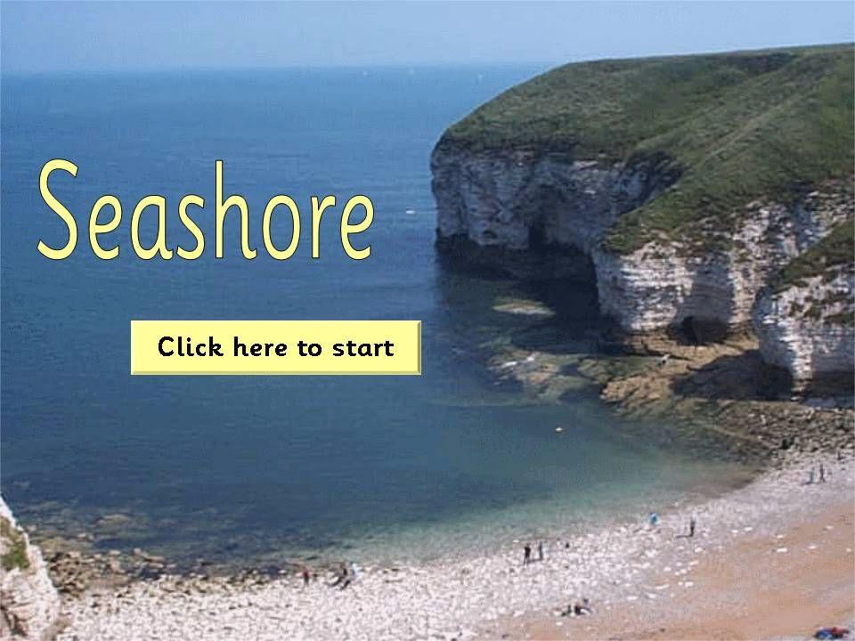 Seashore/Seaside Topic Pack