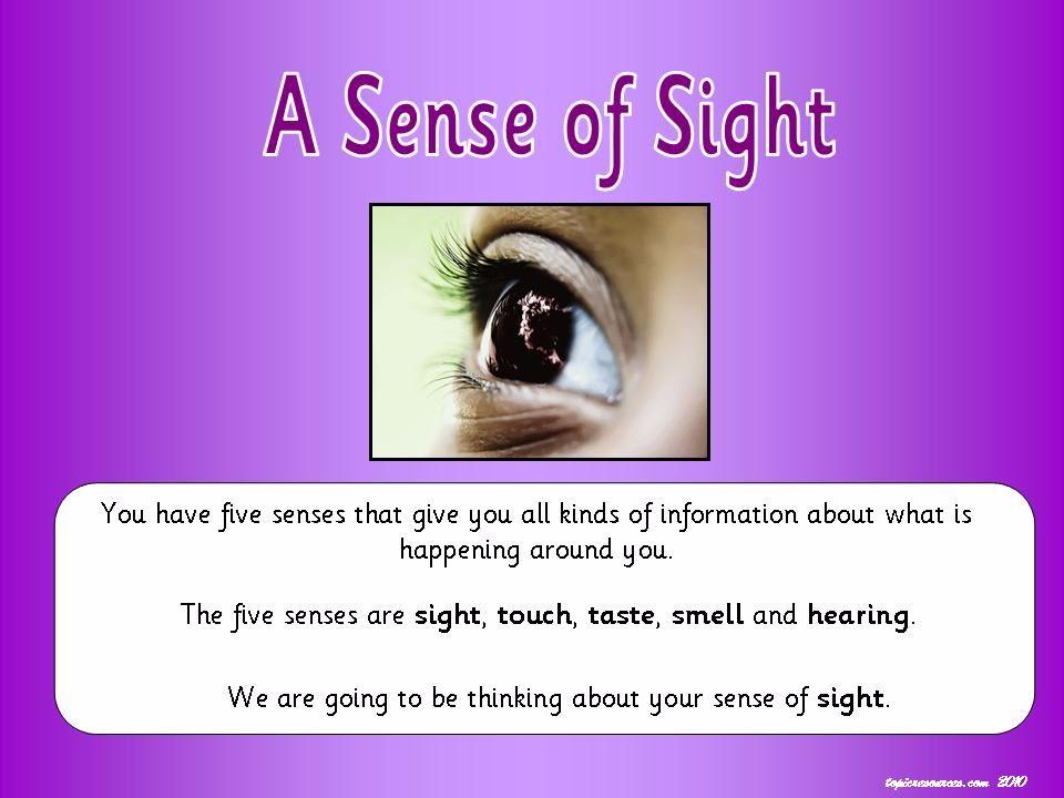 A Sense of Sight Topic