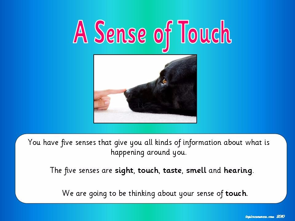 A Sense of Touch Topic