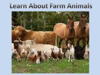 Learn About Farm Animals