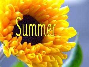SummerPPTSlide1