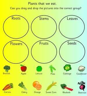 Plants, Flowers and Seeds, EYFS, KS1, SEN, topic resources ...