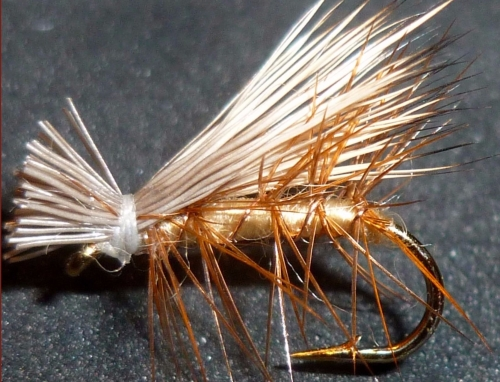 Elk hair caddis /DR 21