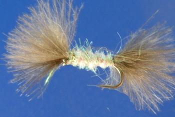 Buzzer - Shipmans - cdc Pearl [CDC 16]