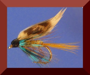 Invicta wet fly #12 (W22)