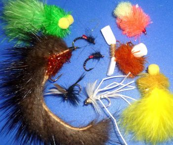 Four seasons pack ,10Trout flies ,  assorted patterns