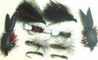 Bibio flies ,10 Trout flies  assorted patterns