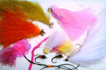 Spring  selection for uk stillwaters,10  Trout flies assorted patterns