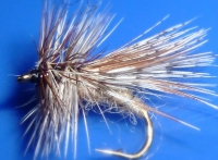 Spent Partridge caddis /DR 14